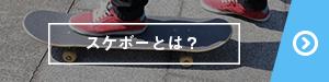 スケートボードとは